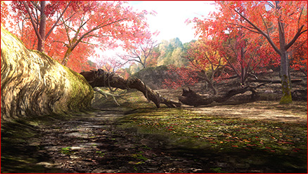 File:DOA5U Forest 2.jpg
