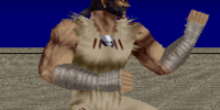 Raidou/Dead or Alive 1 Ultimate costumes