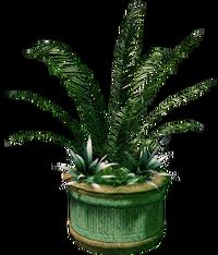 Dead rising Large Planter
