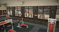Dead rising Flexin PP treadmill