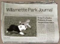Dead rising willamette park journal