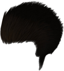 Dead rising Brown Hair Dye