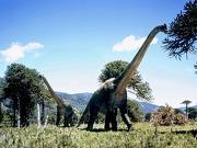 File:180px-Brachiosaurus.jpg
