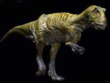 Carcharodontosaurus Igiduensis