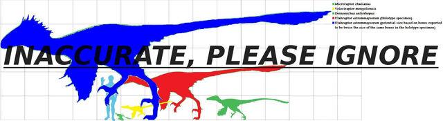 File:Dromaeosauridae scale.jpg