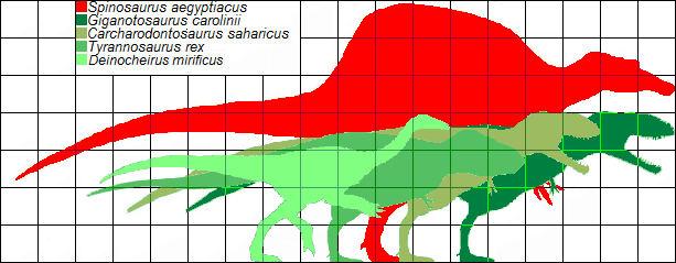 File:Scale of largest theropods by MASS.png
