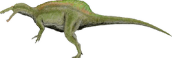 Accurate Baryonyx