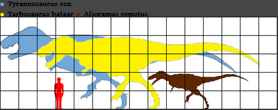 Tyrannosaurus and Tarbosaurus scale