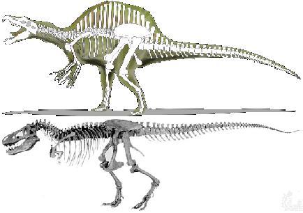 File:Spino rex comp.jpg