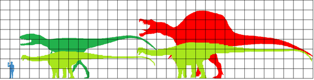 File:Carch + Spino comapred to diplodocid.png