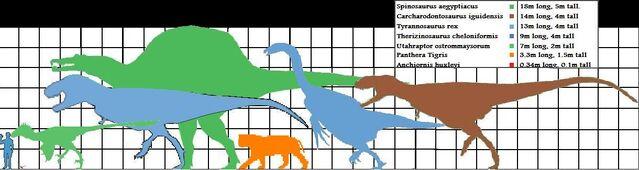 File:Theropod scale.jpg