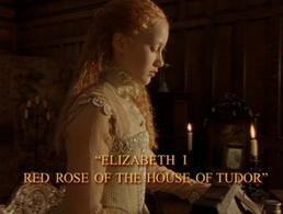 Red-Rose-of-the-House-of-Tudor