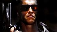 Terminator (Skin)