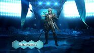 Raiden (PS All Star)