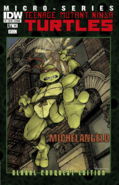 Teenage Mutant Ninja Turtles - Michelangelo as he appears on the front art cover of the IDW Comics
