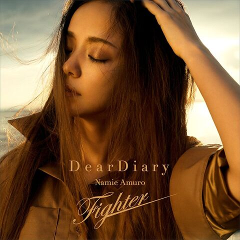 File:Dear Diary Fighter single.jpg