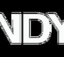 Cindy J