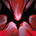 Thumbnail for version as of 20:52, May 21, 2012