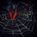 File:Spin Web.png