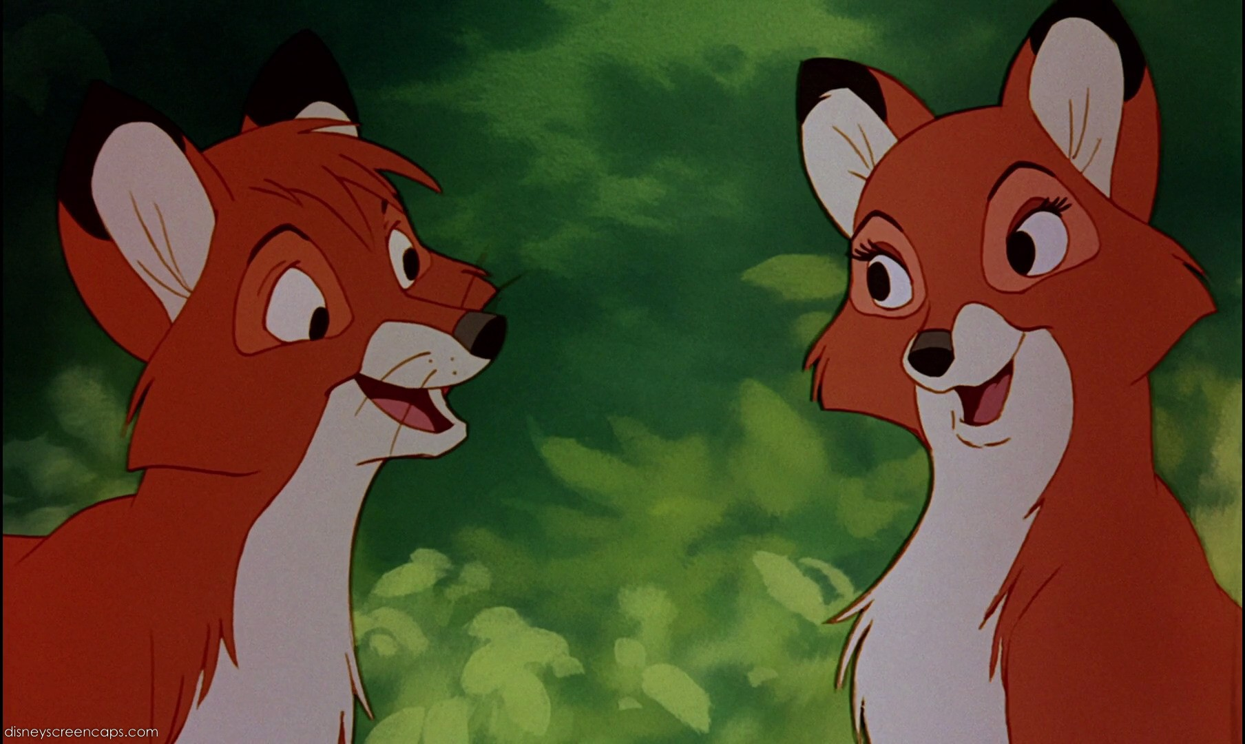 image tod vixey together 2 fox and the hound jpg degrassi