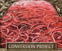 Conversion project