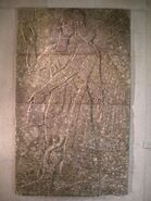 Assyrian winged genie from Nimrud