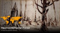 Haunted Romanian Forest