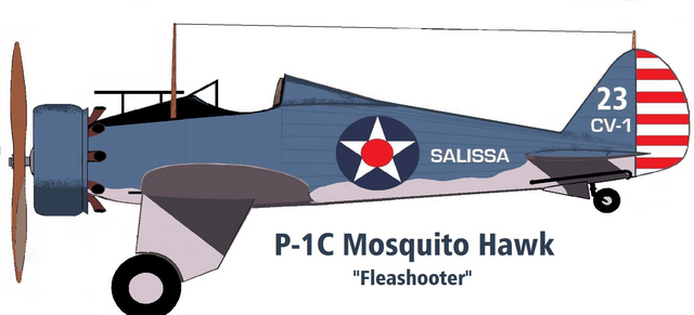 File:P-1C by Taylor Anderson.png