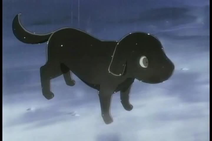 Black Dog Tv