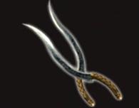 Cutlaseer