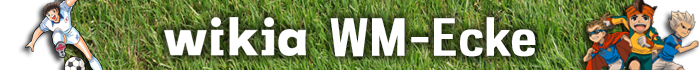 WM 2014 Blog-Header.png