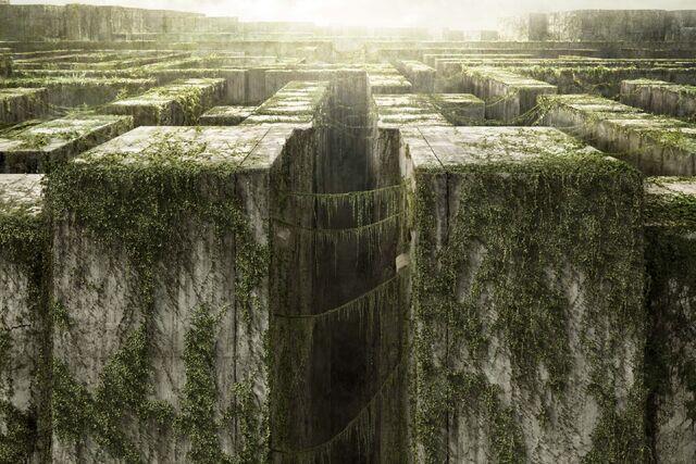Datei:Maze-Maze Runner.jpg