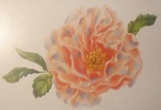 File:Camellians.JPG