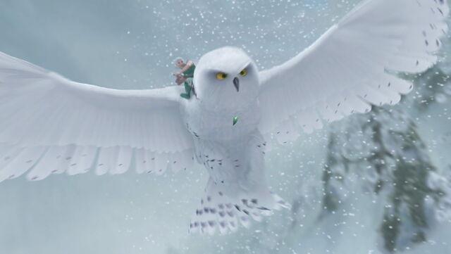 File:Secret-of-the-wings-disneyscreencaps com-5615.jpg