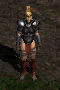 File:Amazon-Hard Leather Armor-Front.png