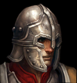 GuardTristram2 Portrait.png