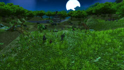 Laleh-adventure-01-021.jpg