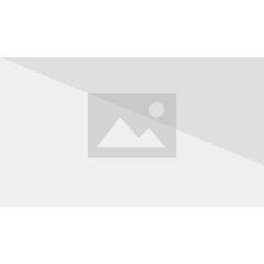 Die Wurfdolche werden hinten in einem Etui am Waffengurt getragen.