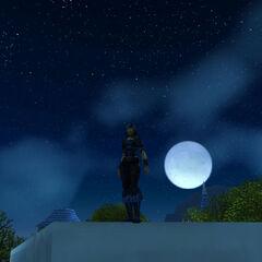 Nachts sind alle Katzen blau.
