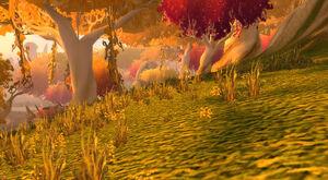 Lebender Wald