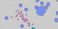 Pentagon Nest