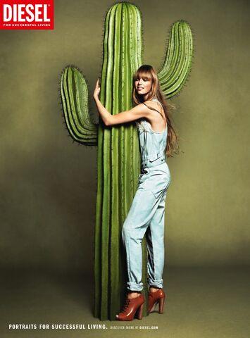 File:SS12-campaign-cactus.jpg