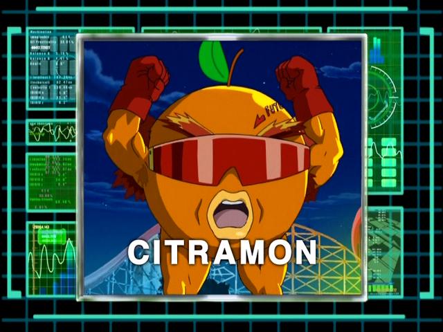 File:DigiAnalyserDS-Citramon.png