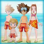 "Taichi ""Tai"" Kamiya, Yamato ""Matt"" Ishida, Mimi Tachikawa, and Takeru ""T.K."" Takaishi (Swimsuits) dm"