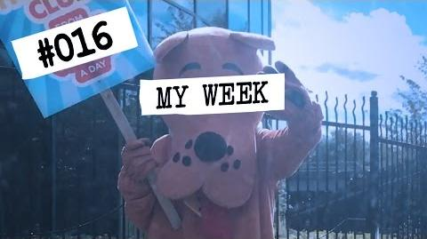 CATCHUP SPECIAL (Part 4) My Week 016 Vlog