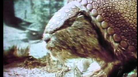 "A promo for the very weird ""Prehistoric World"""