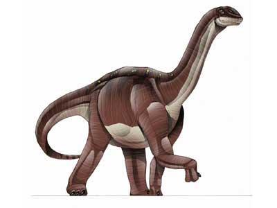 Blikanasaurus 1224711-L