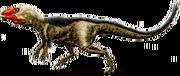 Dryptosaurus featherd