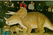 Sk21 Heureka - Triceratops C