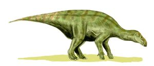 Iguanodon BW